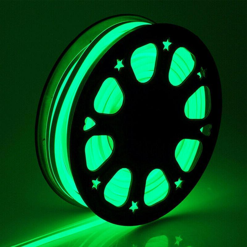 110V LED Flex Home Decor