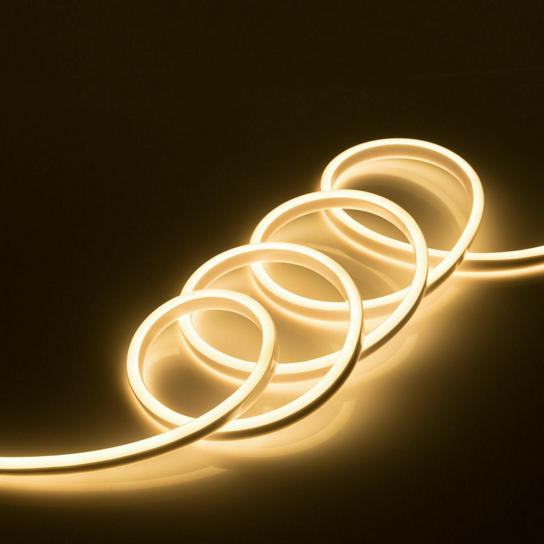 100ft Flex Neon Rope Garden Decor 110V