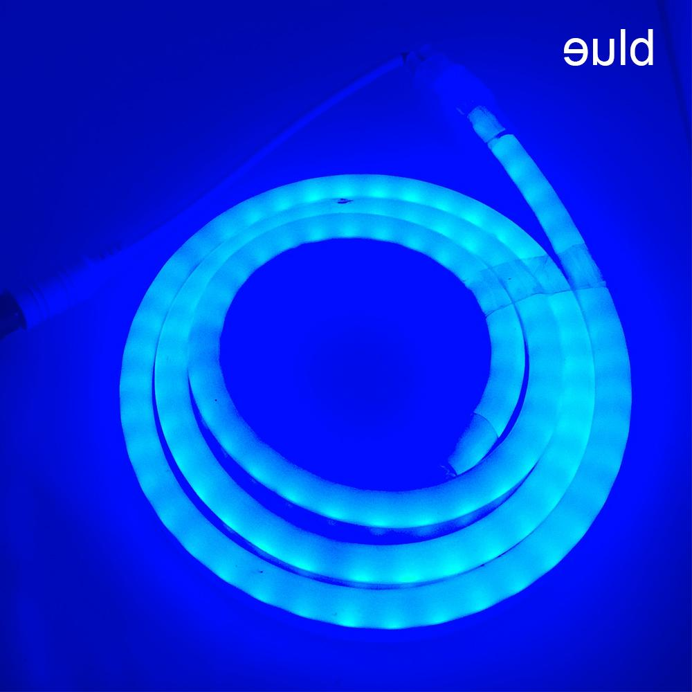 1M-100M 12V LED Strip with Plug 2835 120leds/m White Green Blue Tube lamp