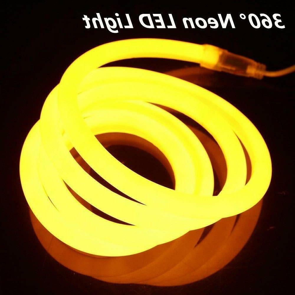 360 Degree Neon Rope Light Garden Home Sign 110V 150ft